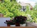 Spitzenrendite - sichere Miete - 2-Zimmer Wohnung mit Balkon in Schoppershof 226562