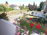 TOP gepflegtes 2-3 Familienhaus mit Garage, Carport, Stellplätze und Garten in Altendorf 700504
