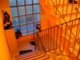 Große helle 3-Zimmer-Wohnung  14683