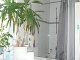 Wohnen im HERZEN der ALTSTADT, perfekt geschnittene 3 ZKB, Wohnküche, RED Prov. 66171