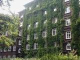 +++Begehrtes Eimsbüttel+++ Vermietete 4,5 Zi-Etagenwohnung in bester Lage 48704