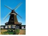 Windmühle (Galerie-Holländer) auf der Insel Fehmarn - teil-/vollgewerblich nutzbar 48571