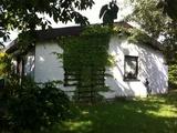 Wunderschönes Einfamilienhaus in Toplage zu vermieten.  99744