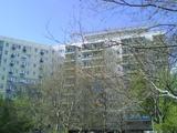 Provisionsfrei! preiswerter 1-Raum-Wohnung in super Wohnlage, möbliert, Nachmieter: Vermietung Wohnung in 99084 Erfurt Erfurt-Altstadt 79975