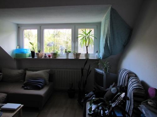 Nachmieter Gesucht Schöne Ruhige Zentral Gelegene Dg Wohnung In